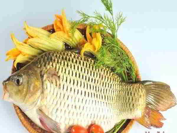 Mơ thấy ăn cá là điềm báo gì, đánh số nào dễ trúng?