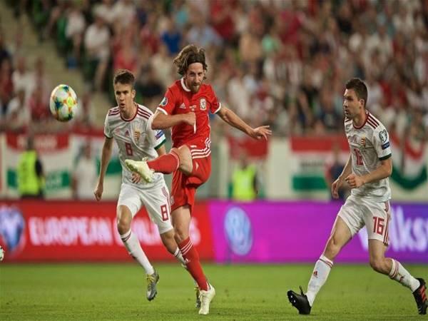 Nhận định kèo Châu Á Wales vs Hungary (2h45 ngày 20/11)