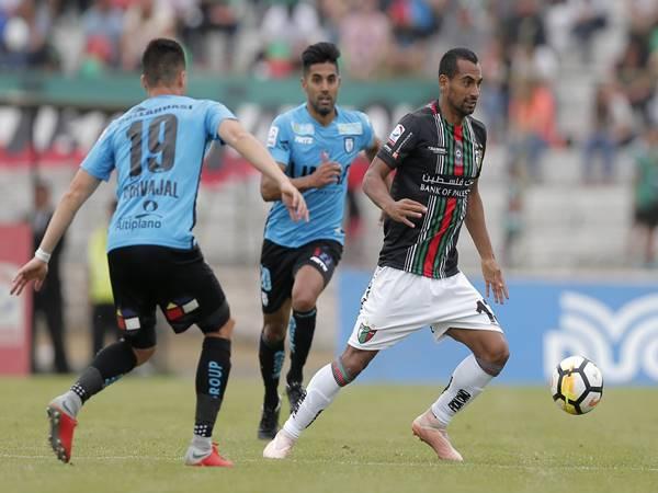 Nhận định Deportes Iquique vs Palestino (20h30 ngày 28/12)