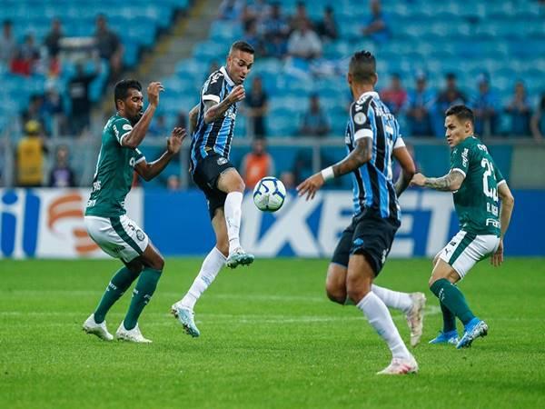 Nhận định trận đấu Catolica vs Palmeiras (5h15 ngày 15/7)